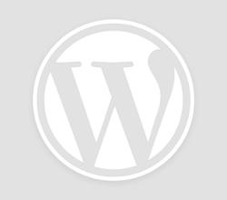 Passeggino leggero Baby Jogger Trio City Premier: recensione e opinioni
